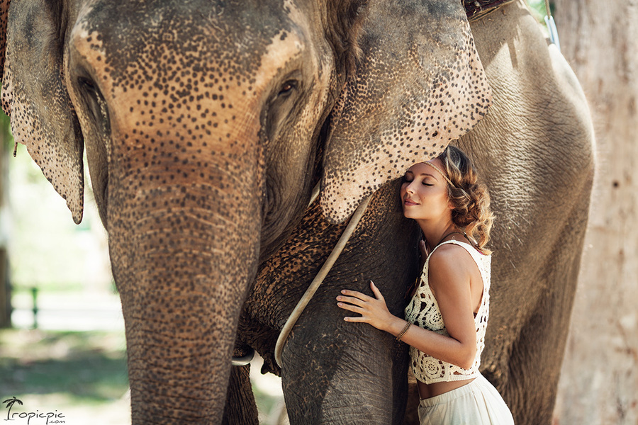 girl and an elephant in Thailand, model photoshoot