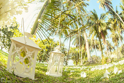 Perfect Wedding for couple with family and guests on small island