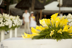 Professional destination wedding photography